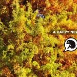 2016年 元旦 明けましておめでとうございます